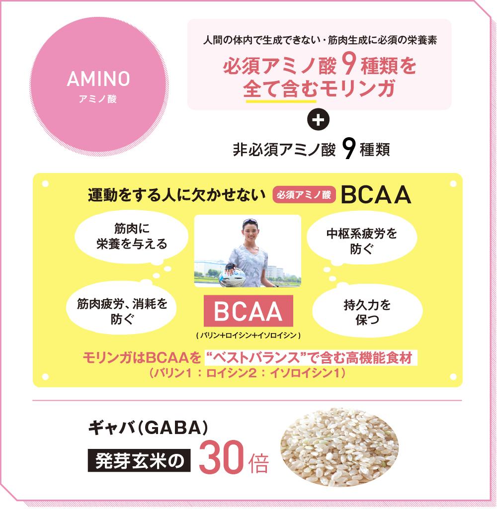 アミノ酸 人間の体内で生成できない・筋肉生成に必須の栄養素 必須アミノ酸9種類を全て含むモリンガ+非必須アミノ酸9種類 運動をする人に欠かせない必須アミノ酸BCAA(バリン+ロイシン+イソロイシン)筋肉に栄養を与える 筋肉疲労、消耗を防ぐ 中枢系疲労を防ぐ、持久力を保つ モリンガはBCAAをベストバランスで含む高機能食材 ギャバ(GABA)発芽玄米の30倍
